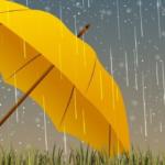 When do you use an umbrella company?
