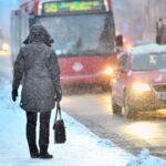 Jobs that you can do in winter while quarantined